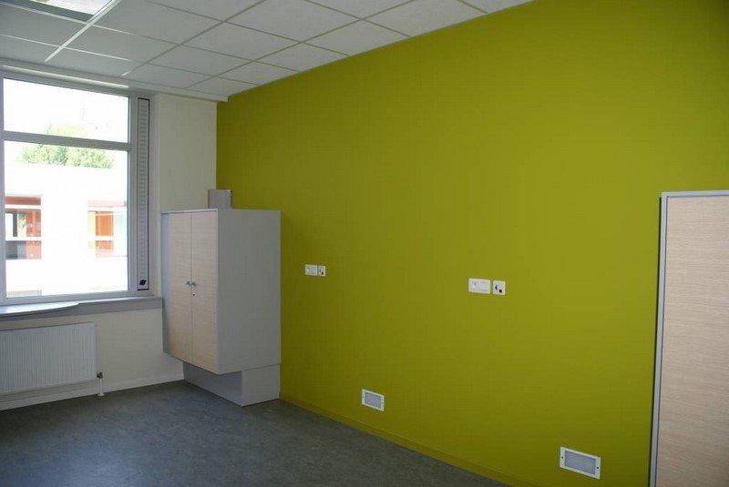 travaux de peinture - Mur de couleur verte