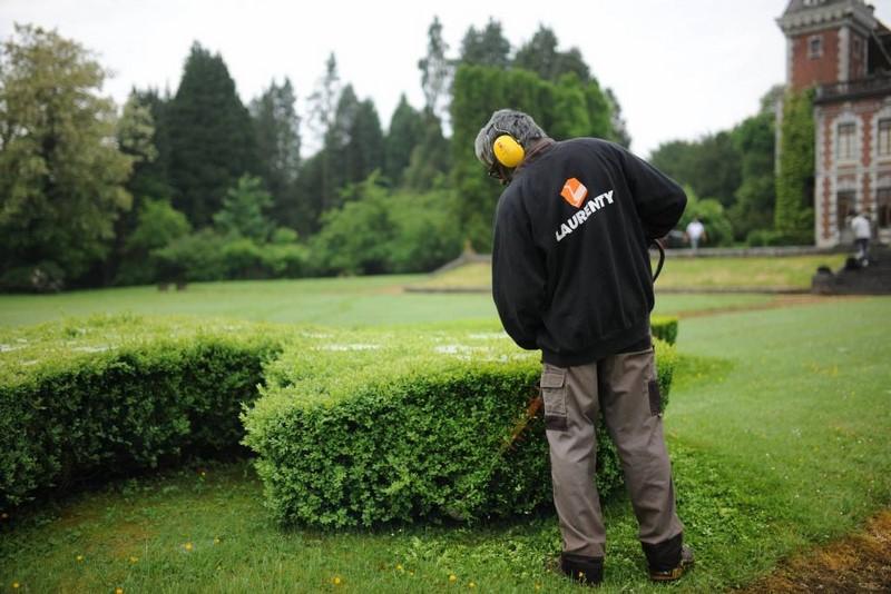 Service de taille d'arbustes - Laurenty