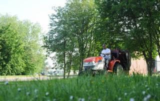 Tonte de pelouse - Laurenty Espaces-verts